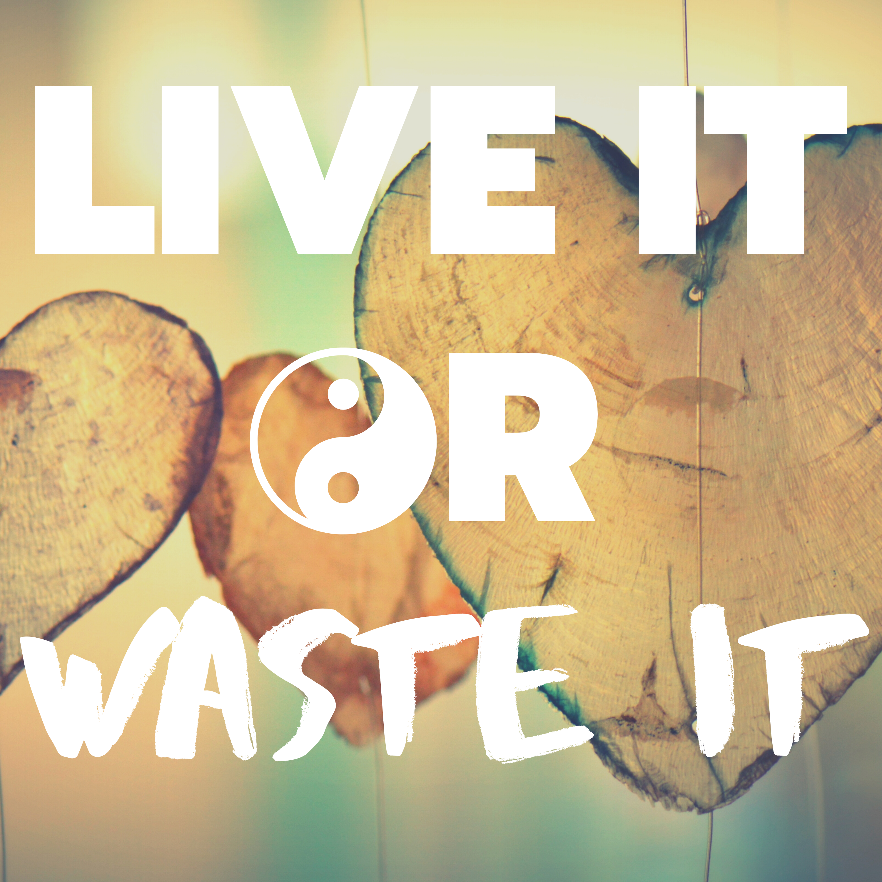 Live It Or Waste It