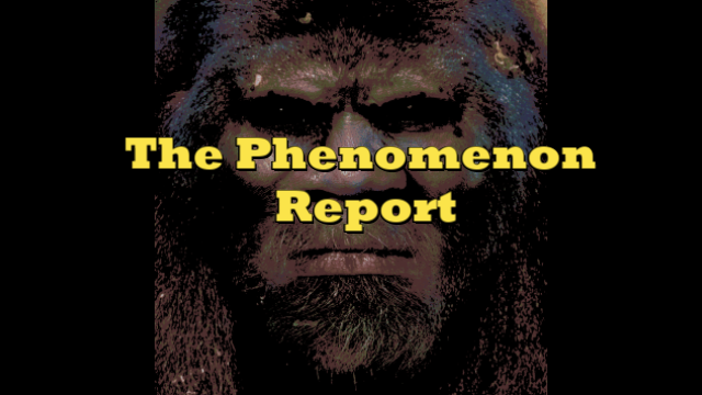 The Phenomenon Report