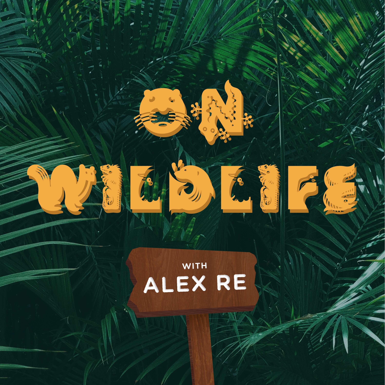 On Wildlife